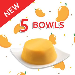 Bundle of 5 Mango Pudding